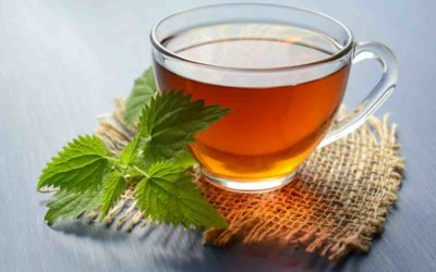 Herbal Tea | Nourishing Skin in winters